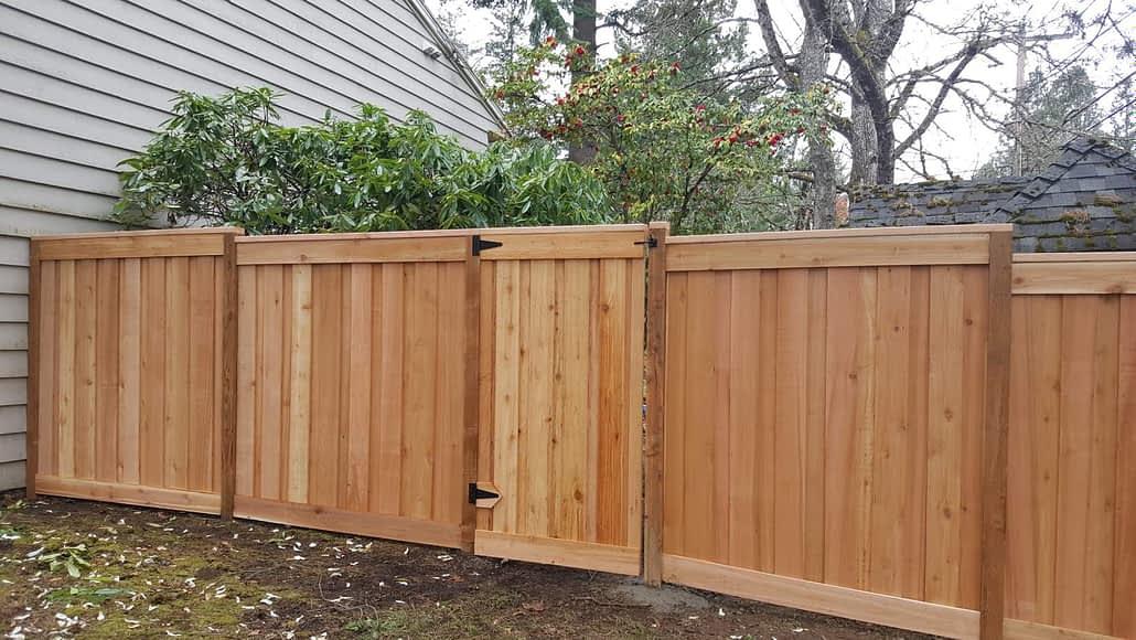 cedar fencing near me