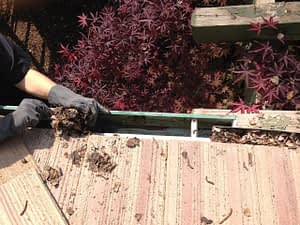 Gutter Cleaning Madera CA